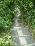 久徴園内の遊歩道