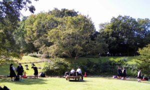 1年生は手引きヶ丘公園(多伎)に行きました